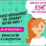 Mon avis sur le site Swagbucks